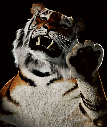 De l'homme-tigre aux migrants, les œuvres coup de poing du Dhaka Art Summit