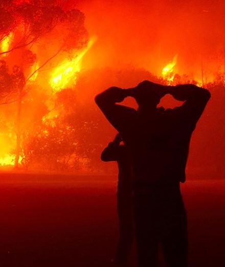 À un mois des Oscars, Hollywood brûle-t-il toujours?