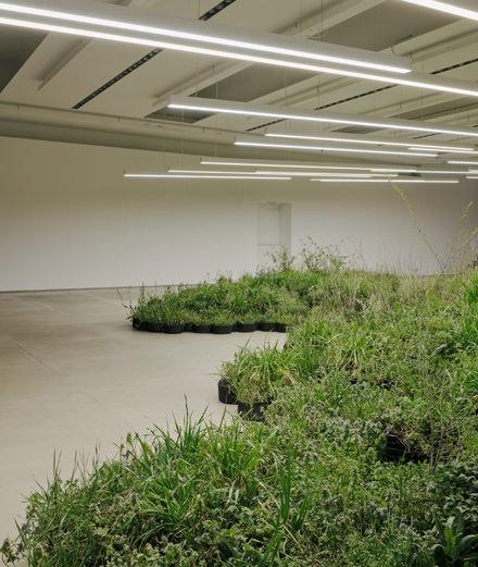 Jil Sander met la nature à l'honneur à Milan
