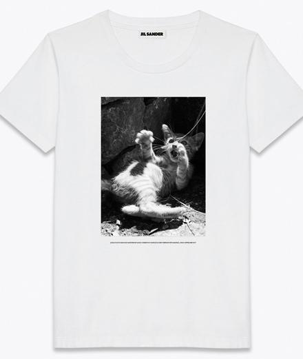 L'objet du jour : le tee-shirt chaton par Jil Sander x Mario Sorrenti