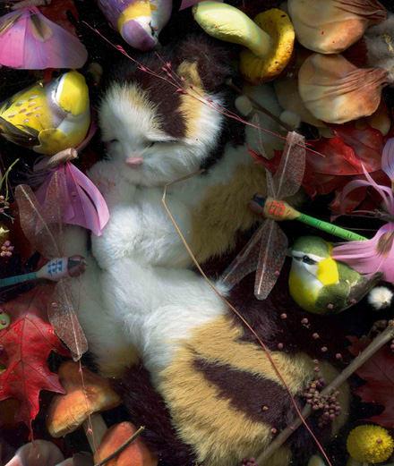 Plongée dans l'enfer de la consommation avec les collages surréalistes de Lucie Stahl