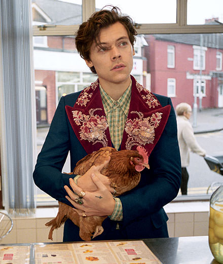 Harry Styles squatte un fish & chips en Gucci