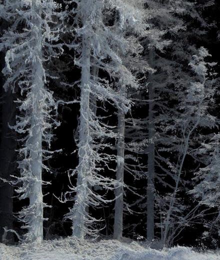 Art Basel : rencontre avec Quayola, le photographe fanatique des algorithmes