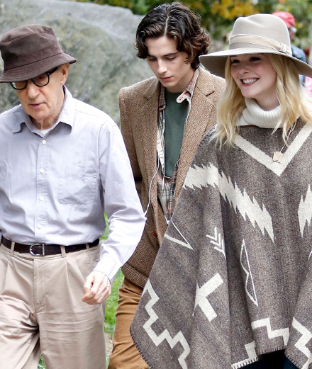 Woody Allen's upcoming Timothée Chalamet movie will be released in Europe