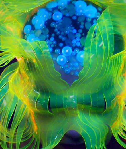 Björk dévoile la version finale de son nouveau clip Notget